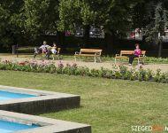 Szőregi rózsák ölelik körbe a múzeum szökőkútját | 2012-05-25