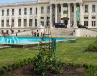 Szőregi rózsák ölelik körbe a múzeum szökőkútját