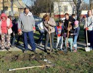 Iskolakert kialakítása | 2019. március 18.  hétfő