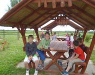 Kirándulás az Erdei Iskolába | 2015-06-17