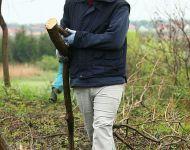 Már messziről is látható Szőregen a Rohonyi-kereszt  | 2012-04-23