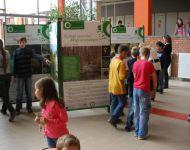 Nyitott szemmel Magyarországon | 2010-11-08