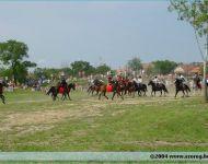 Szőregi csata 2004 | 2004-08-08