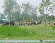 Szőregi csata 2004