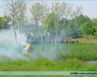 Szőregi csata 2006   2006-08-06
