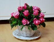 Szőregi Rózsaünnep 2019 | 2019-06-23