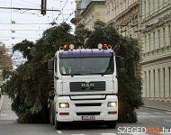 Felállították a város karácsonyfáját | 2012-11-23