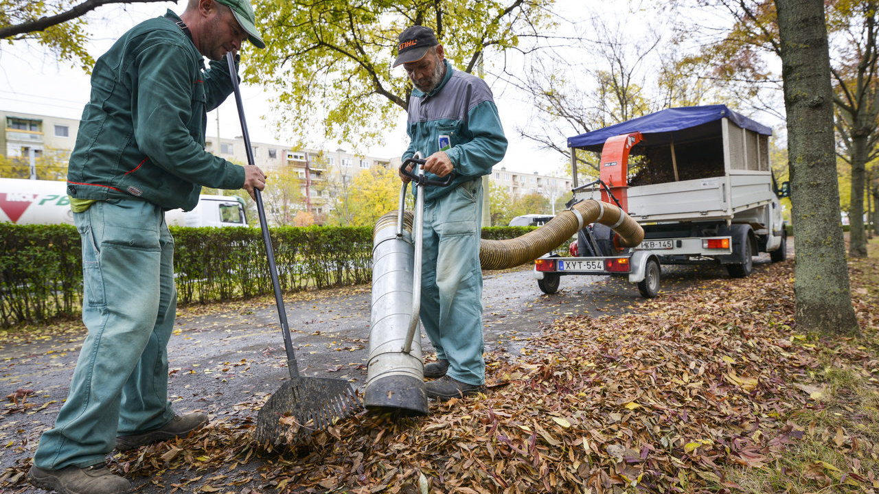 Komposzt készül az összegyűjtött növényi hulladékból