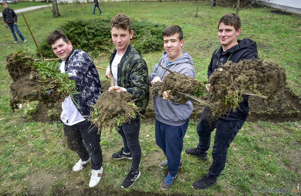 Kertészkednek technikaórán a szőregi iskolások