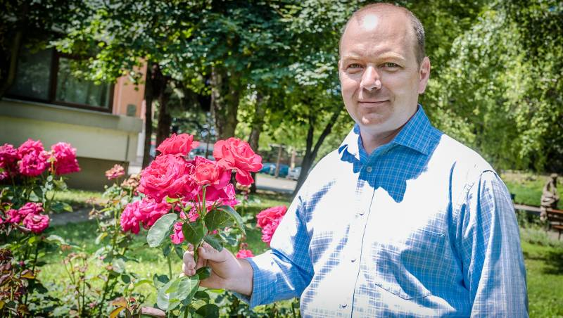 Újra hungarikum lehet a szőregi rózsa