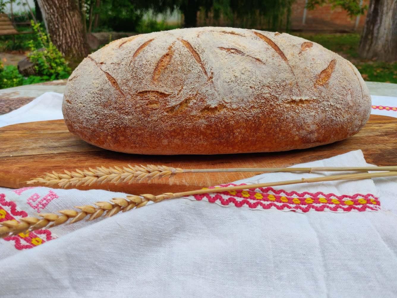 Fodor Ildikóé a legszebb szőregi kenyér